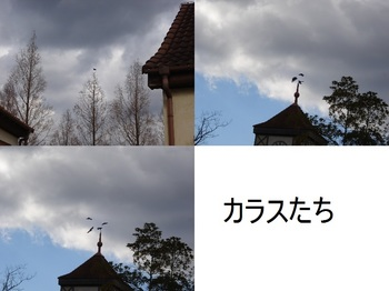 ブルーメの丘3.jpg